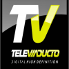 Televiaducto Canal 14